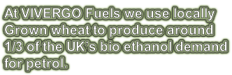 At VIVERGO Fuels we use locally Grown wheat to produce around 1/3 of the UK's bio ethanol demand for petrol.
